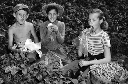Three youngsters enjoy lunch in the garden, 1948