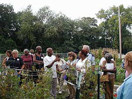 Community Gardening leader and OSU Master Gardener Lloyd Evans, leads a garden tour at Rockefeller Community Garden