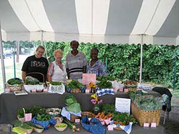 EcoVillage market gardeners, Barbara Strauss, Marilynn Bronson, John and Olivia Yokie in Cleveland, Ohio display their produce for sale, July, 2007