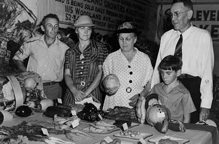Prize vegetables on display, 1940